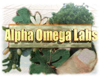 Alpha Omega Labs' Search Engine