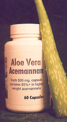Aloe Vera Acemannan - 60 Caps