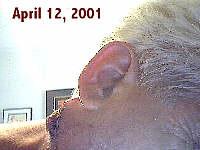 R.L. Banks: April 12, 2001